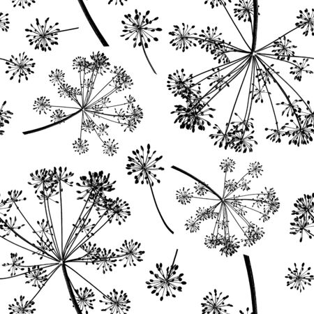 Seamless pattern of group black branches of dill seeds isolated on a white background