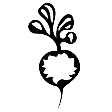 A Vector outline illustration of a black fresh radish or beet is on a white background
