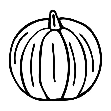 A Vector outline illustration of a black fresh pumpkin is on a white background
