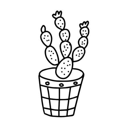 A Black outline hand drawing vector illustration of a decorative cactus Opuntia plant in a pot isolated on a white background