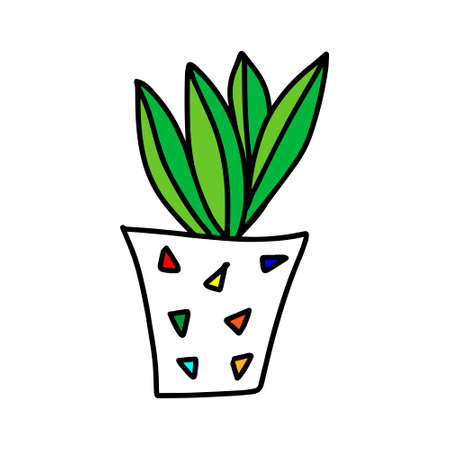 A Colored outline hand drawing vector illustration of a decorative plant Sansevieria in a pot isolated on a white background