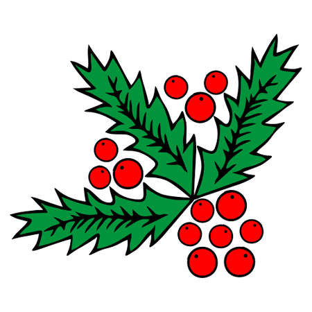 A Colored red and green outline hand drawing vector illustration of a carved Christmas holly plant isolated on a white background