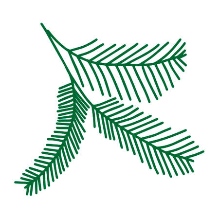 A Green outline hand drawing vector illustration of a carved Christmas fir branches isolated on a white background
