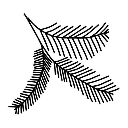 A Black outline hand drawing vector illustration of a carved Christmas fir branches isolated on a white background