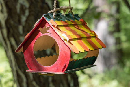 A New colored bird and squirrel feeder house from plywood is hanging on a brown tree in a park in summer