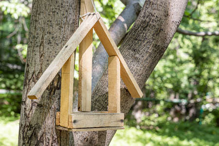 A New yellow bird and squirrel feeder house from plywood is hanging on a brown tree in a park in summer