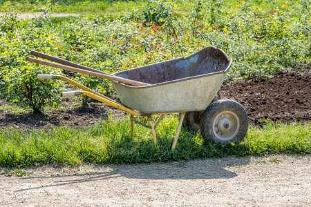 A work on planting seedlings on the flowerbed and trolley in a park in spring we see in the photo