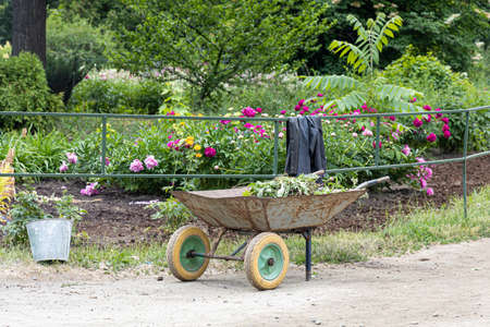 A Work on weeding flower beds and a trolley in a park in the summer park