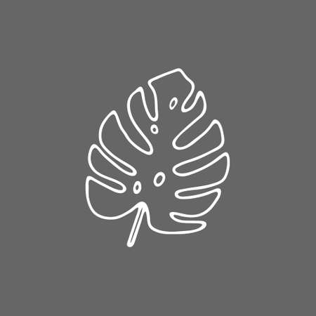 Illustration of a white leaf monstera isolated on a gray background