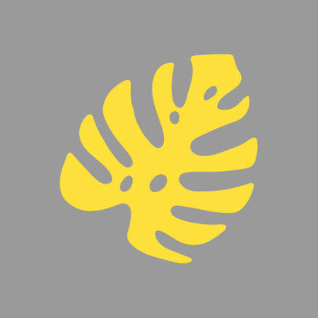 An Illustration of a yellow leaf monstera isolated on a gray background