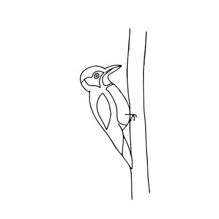 A Hand-drawn black outline vector illustration of one fun woodpecker sitting on a tree on a white background Vettoriali