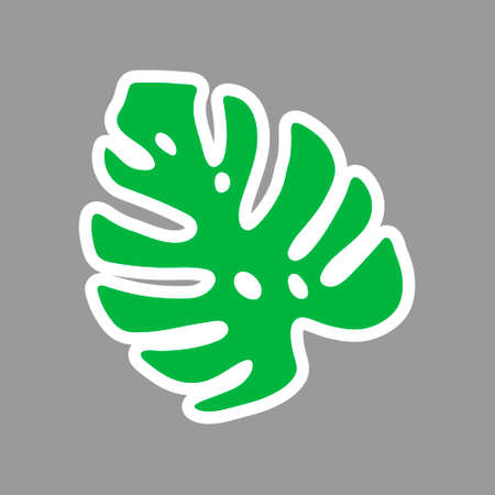 An Illustration of a green leaf monstera isolated on a gray background. Sticker Vettoriali