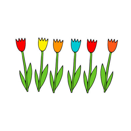A Colored Vector illustration of a group of tulip flowers with green leaves isolated on a white background