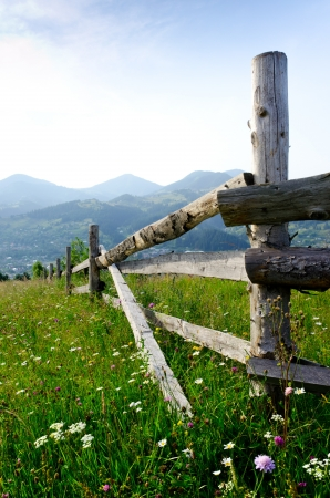 Fence mountains flower meadow Stock Photo - 15092725