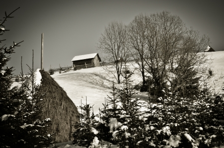 A lone small house on mountain in winter forest - monochrome