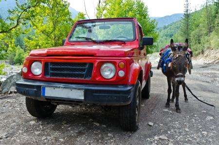Off-road car 4x4 VS donkey Stock Photo