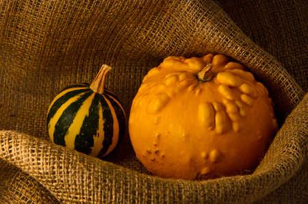 Unusual yellow pumpkin and watermelon - autumn harvest on sackcloth jute background