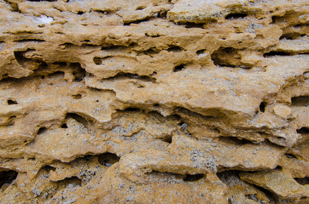 Natural sea stone and sand background texture