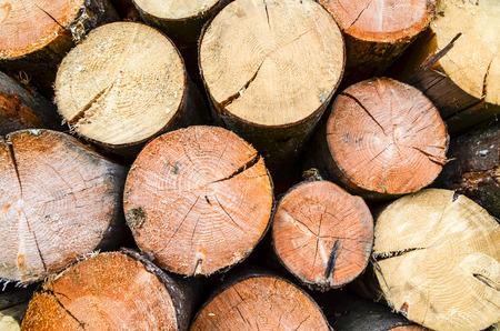 Firewood- freshly sawn timber texture Stock Photo