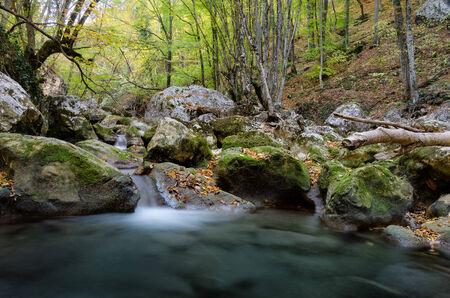 Mountain lake waterfall in deep fall forest