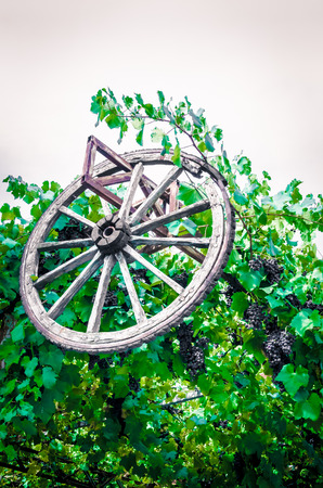 Old wheel and grape on mountains sky and clouds