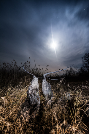 Halo ray of  the moon - night full moon mystical landscape