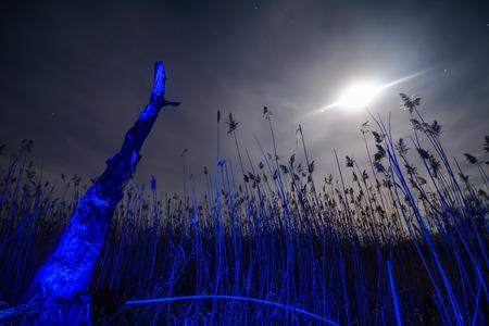 UfO ray of  the unusual moon - night full moon mystical landscape  Stock Photo