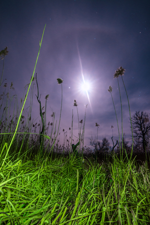 UfO ray of  the unusual full moon halo - night  mystical landscape  Stock Photo
