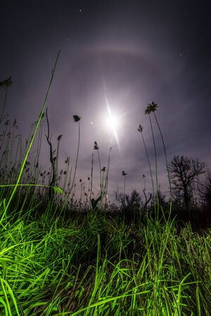 UfO ray of the unusual moon - night mystical landscape background