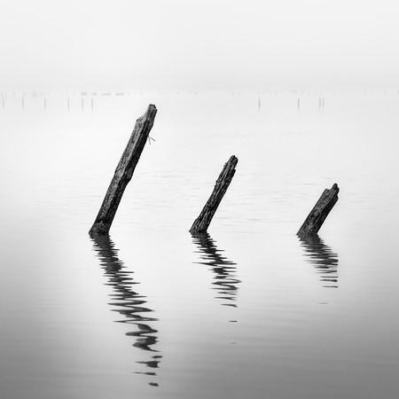 Poles in the water - calmness and silence concept