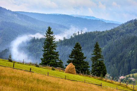 Above the clouds fog mountain panorama background Stock Photo