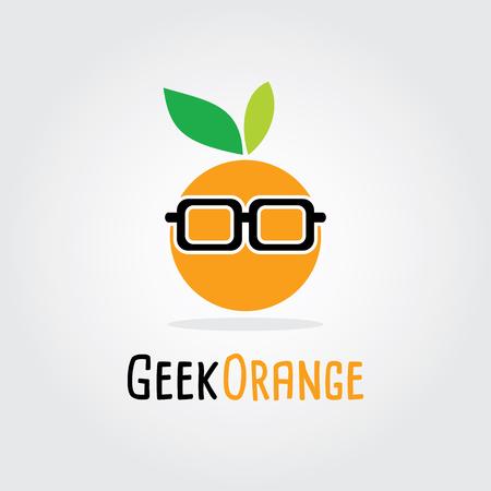 dewdrop: Geek Orange Flat Design. Fruit Vector illustration. nerd, smart, hipster - Fruit icons and symbols