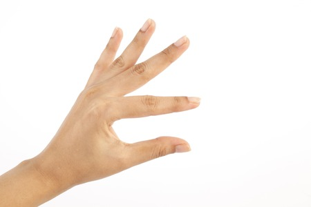Female hand isolated on white background for copyspace photo