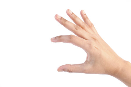 Female hand isolated on white background photo