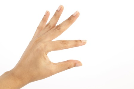 Female hand showing blank presentation on white background photo