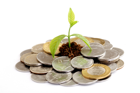 rupee: Green Baby plant growing on Indian rupee coins - Money concept
