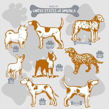 犬は、名前を持つ国によって孤立したイラストに世界ベクトル描画とシルエットの品種、アメリカ合衆国