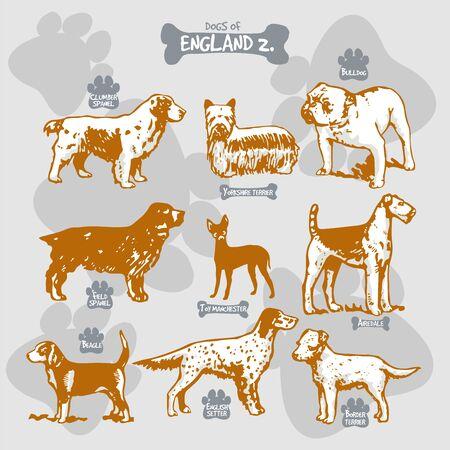 犬は、名前を持つ国によって孤立したイラストに世界ベクトル描画とシルエットの品種、イングランド2