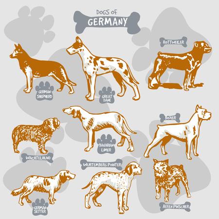 犬は、名前を持つ国によって孤立したイラストに世界ベクトル描画とシルエットの品種、ドイツ1