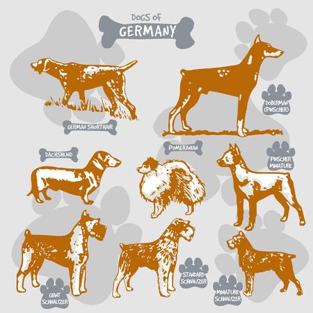 犬は、名前を持つ国によって孤立したイラストに世界ベクトル描画とシルエットの品種、ドイツ2  イラスト・ベクター素材