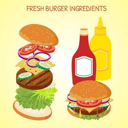 Fresh Hamburger ingredients vector set
