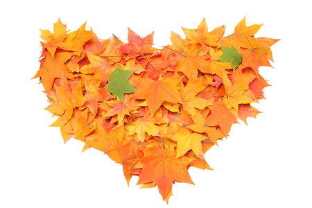Autumn heart symbol isolated on white background photo