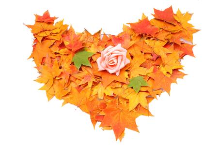 Autumn heart symbol isolated on white background photo