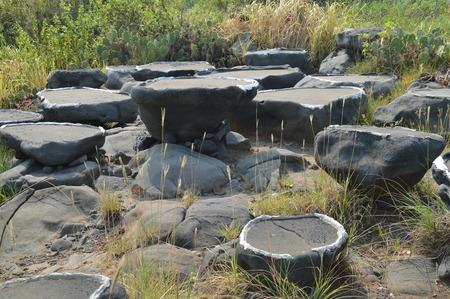 salina: Chinese Yangpu Millennium ancient salt