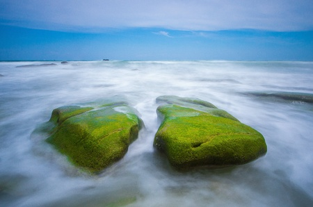 seascapes: Mossy stone beach sabah