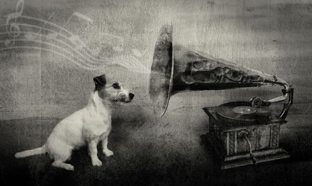 russell: dog staring at gramophone