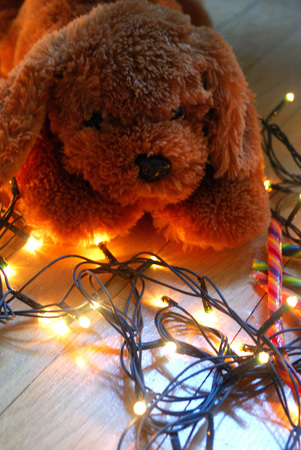Teddy puppy lying on fairy lights with warm colors. Christmas background.