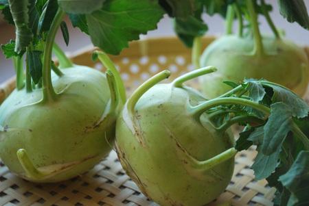 Raw kohlrabi roots on bamboo basket. Zdjęcie Seryjne
