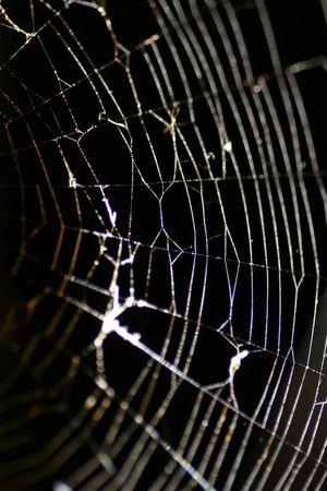 A macro of a cobweb at night. Imagens