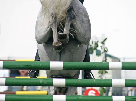 The backside of a horse jumping over a fence Stock Photo